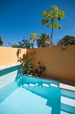 Casa de Amistad: Pool