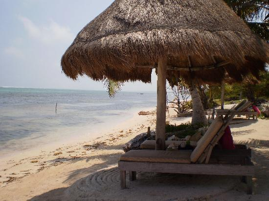 Sin Duda Villas: Palapas! Our favorite place to relax