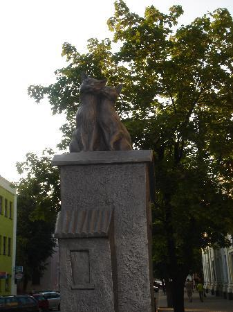 Brest, Bielorussia: Cats on a hot tin roofs