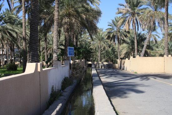 Omán: falaj di rustaq