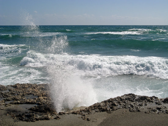 Hobe Sound, FL: When the wind is right