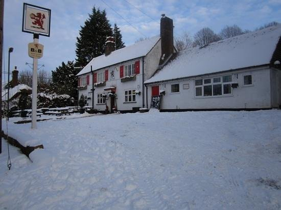 The Red Lion: Red Lion Jan 2010
