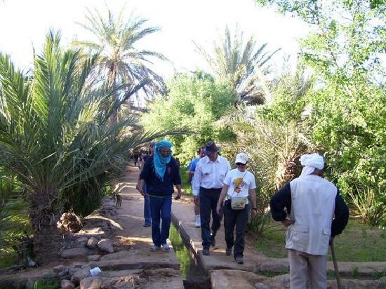 Riad Tadarte: la marche dans les jardins de hassilabiad