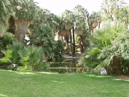 Twentynine Palms, Kalifornien: Oasis of Mara at 29 Palms Inn
