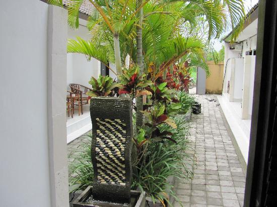 Legian Guest House : The view of the courtyard outside my door
