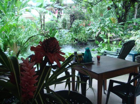 Playa Bluff Lodge: Der Garten-Pavillon am Teich im Dschungelgarten