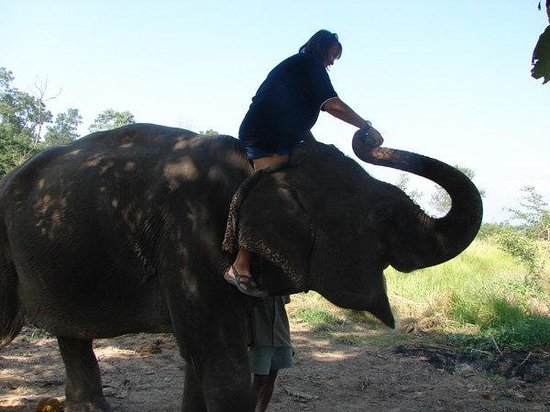Friendship Nepal Tours and Travels : Chitwan National Park