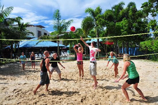 Nomads Cairns Backpackers and Serpent Bar: Beach volleyball court