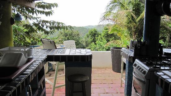 Carole's Rainforest Villas : Villa