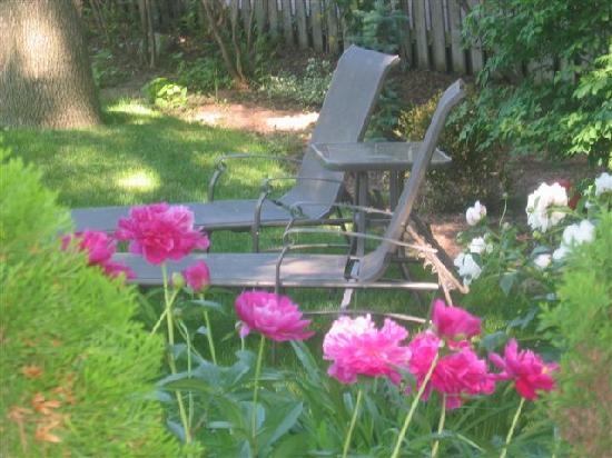 Almar House B&B: Enjoy the outdoor garden and sitting area