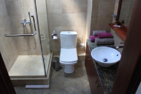 salle de bain - Picture of Lagon Bleu Azur, Flic En Flac - TripAdvisor