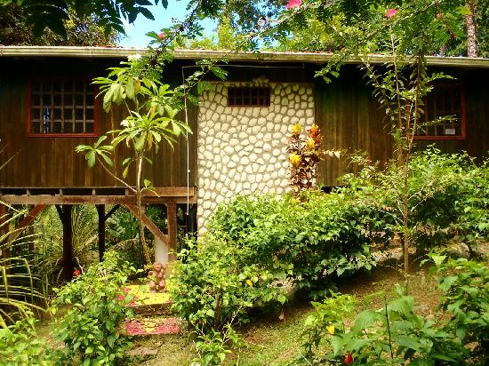 Cashew Hill Jungle Cottages: Playa Negra side