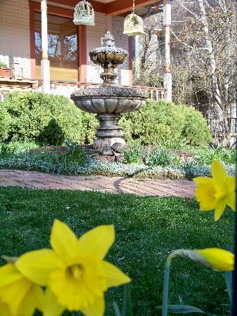 Best Kept Secret B & B: April - Green, Green and Daffodils Blooming