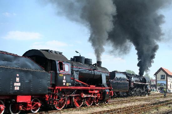 Bahnbetriebswerk Wolsztyn (Parowozownia Wolsztyn): Dampfmaschinenparade6