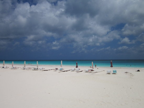 Pink Sands Beach: Beautiful Spot to Rent Chairs and Umbrellas