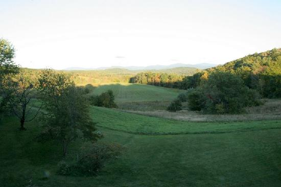 Lant Hill Farm Bed & Breakfast: view from the patio