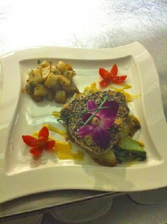 Vigilucci's Seafood and Steakhouse: nice fish