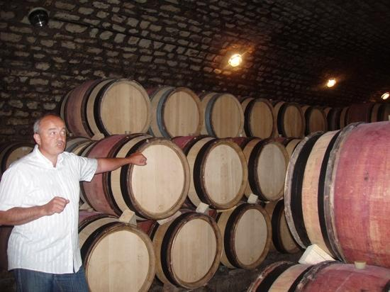 Wine and Voyages : Laurent - enthusiastically teaching