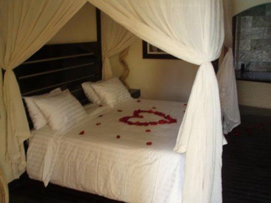 The Rhino Resort Hotel & Spa: Habitaciones