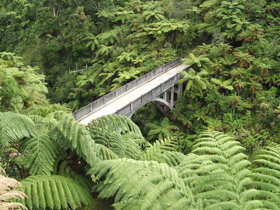 Spirit of the River Jet - Whanganui River: The Bridge to Nowhere