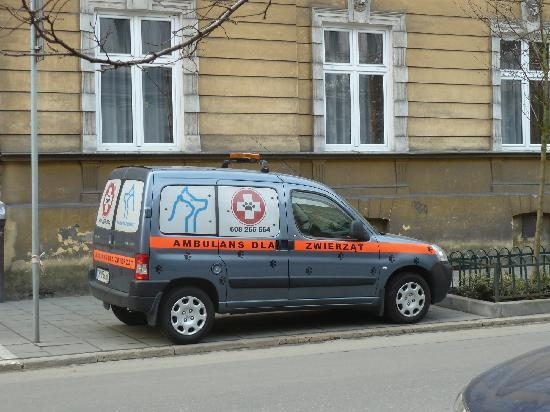 Krakow, Poland: Ambulance just for dogs & cats