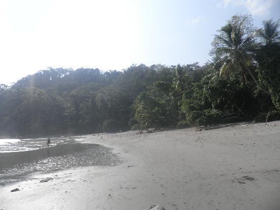 Hotel Playa Espadilla: Otra playa maravillosa