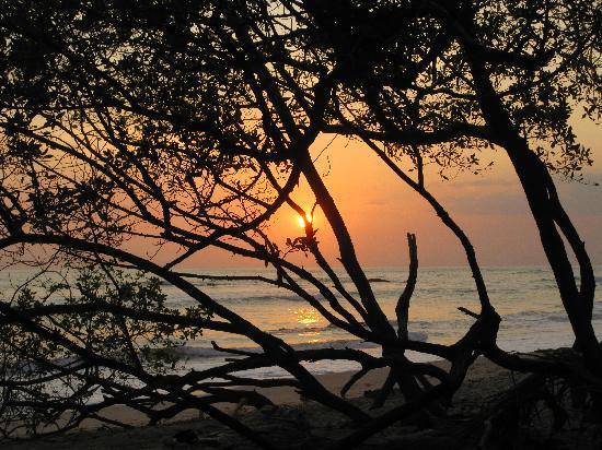 Hotel Playa Negra: Sunset at the beach