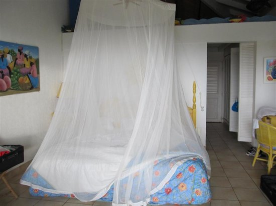 Alizea: Mosquito net over the bed.  Didn't need it most nights...there were very few mosquitos.  All it