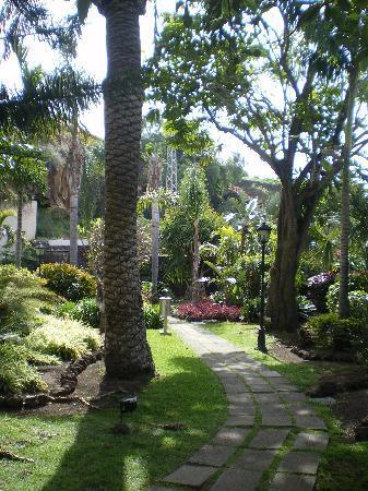 diverhotel Tenerife Spa & Garden: le jardin botanique