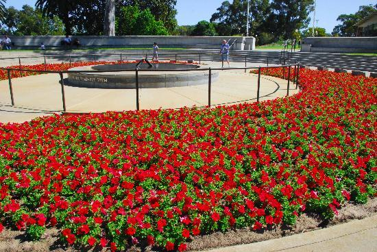 Kings Park & Botanic Garden: We Will Remember Them...