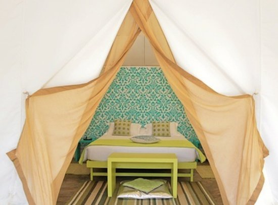 Amarya Shamiyana: Through the tent's entrance