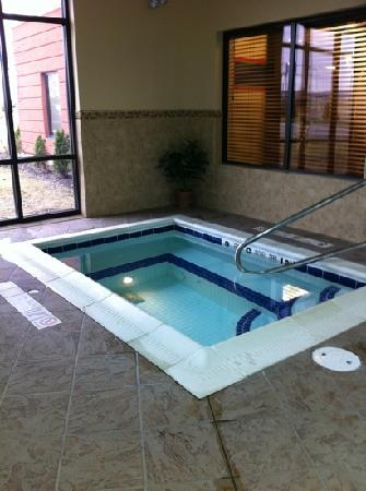 Hampton Inn Elmira/Horseheads: whirlpool