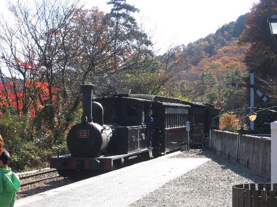 Museum Meijimura: 蒸気機関車(乗れます☆)