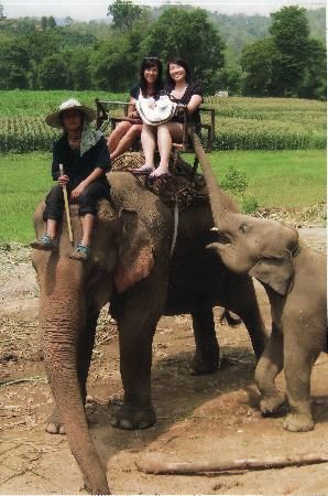 Ruen Come In: Elephant riding during a tour which the hotel had booked for us