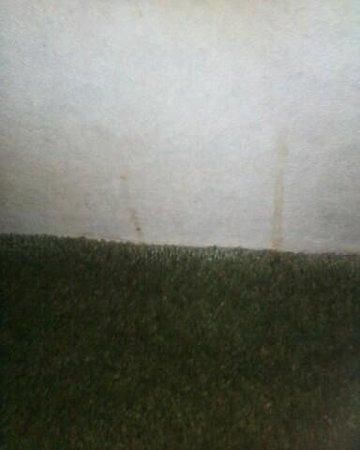Americas Best Value Inn & Suites Victoria: Wall next to the stain on the carpet