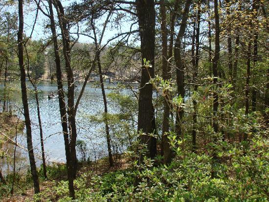 هوت سبرينجز, أركنساس: Garvin Gardens