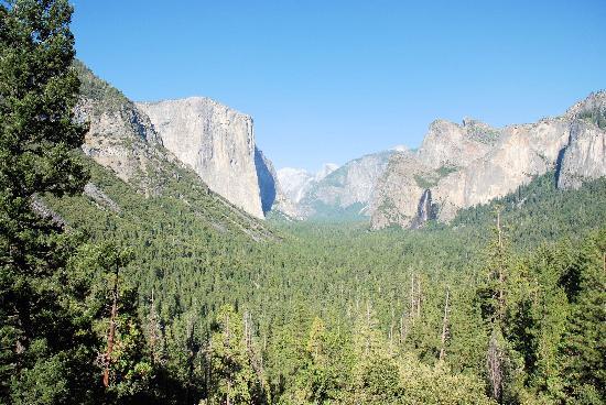 هاوندز تووث إن: Yosemite Park