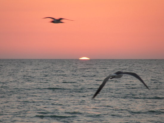 Longboat Key, Floryda: Sunset