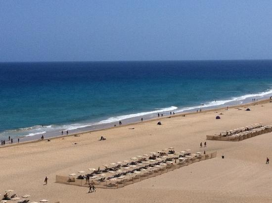 Iberostar Playa Gaviotas: beach ( though no hotel beds)