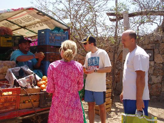 Troncones Point Hostel: Produce truck