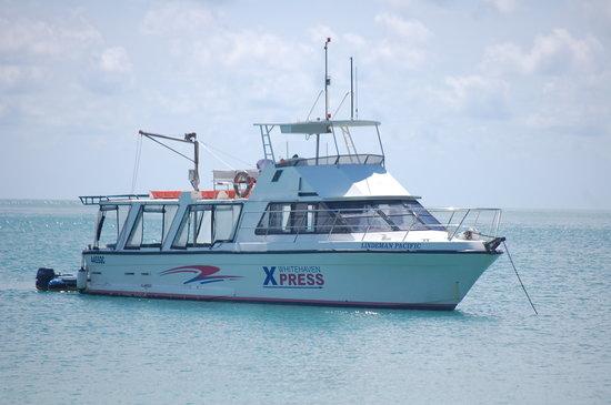 Whitehaven Xpress: The Boat