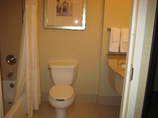 Hilton Garden Inn Annapolis: bath