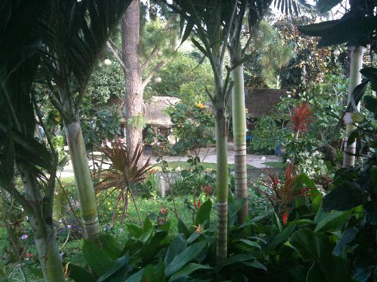 Balinsasayaw Chicken Grill & Restaurant: gardens all around