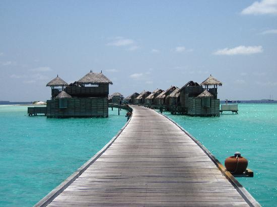 Gili Lankanfushi Maldives : Jetty 1