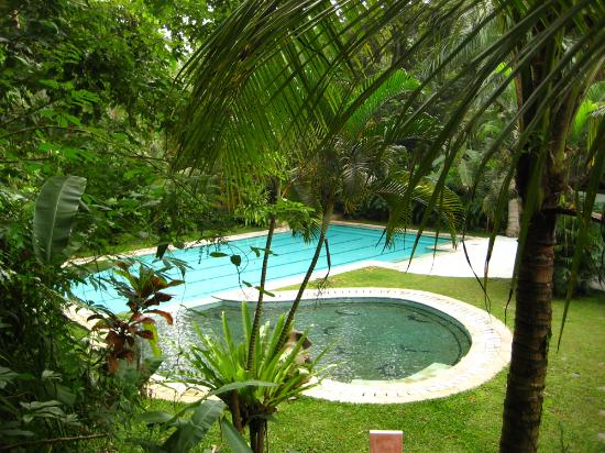 Jiwa Damai Organic Garden & Retreat: Pool at Jiwa Damai