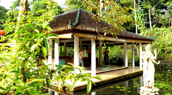 Jiwa Damai Organic Garden & Retreat: Morning yoga at Jiwa Damai Bali