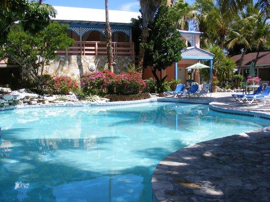 Turtle Cove Inn:                   View of pool