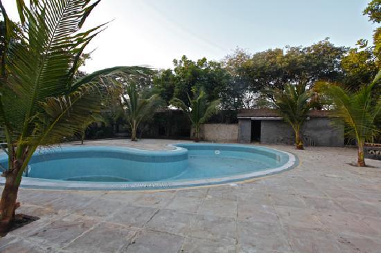 Dasada, India: Rann Riders, Little Rann of Kutch, Gujarat: The Swimming Pool