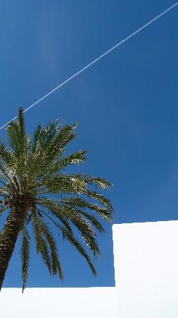 Vilacampina Guesthouse : Deep blue sky on April 1st