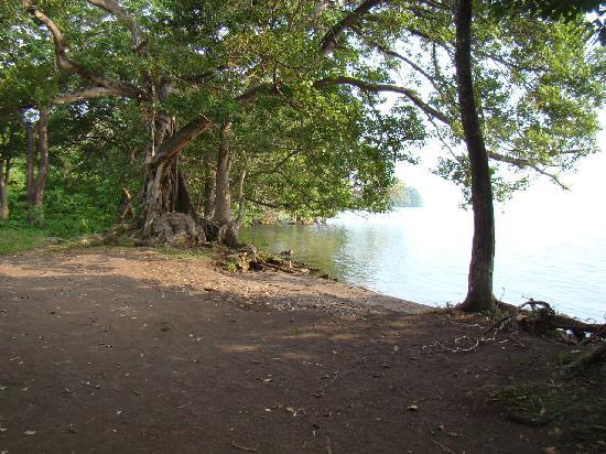 Hotel Monkey's Island: the beach